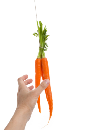 Dangle Carrot iStock_000016858496XSmall
